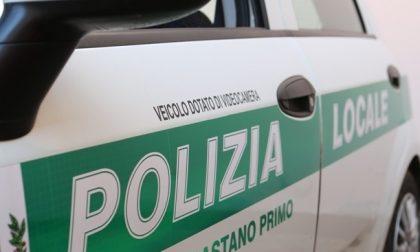 Castano Primo, trovato gatto bollito e scorticato: l'appello della Polizia locale