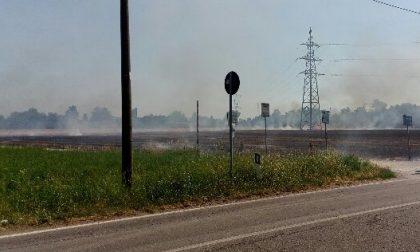 Cerro, campi di frumento in fiamme verso Parabiago: pomeriggio di paura