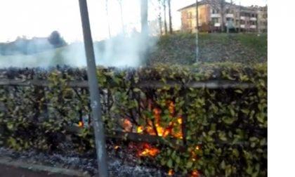 Corbetta, a fuoco una siepe vicino a una villetta: l'ipotesi del dolo