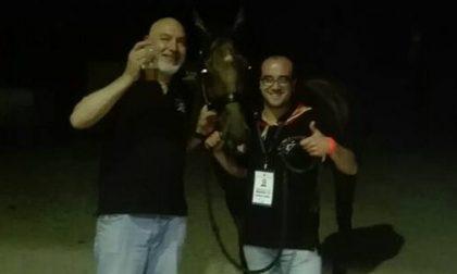 Legnano: Palio, spettacolo alla Provaccia: vince Legnarello con il cavallo scosso