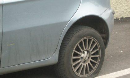 Legnano, Vandali in azione: bucate 12 ruote in via Rosmini
