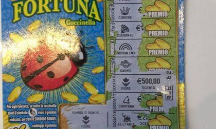 Legnano, la dea bendata suona due volte: vinti altri 1000 euro nella tabaccheria di corso Italia