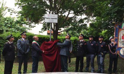 Legnano, ripristinata in tempo record per l'inaugurazione la targa intitolata a Peppino Impastato