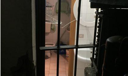 Legnano, sradica la grata della finestra per rubare nel bar: preso dai carabinieri