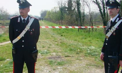 Parco delle Groane, maxi servizio anti-droga dei carabinieri: tre arresti