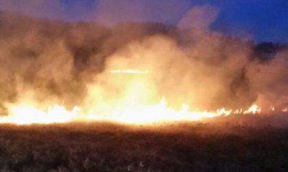 Rescaldina, incendio in un campo