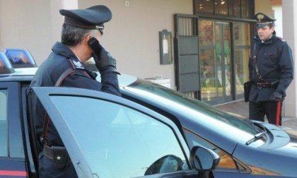 Rescaldina, rapinano il Maxi Zoo con la pistola: fuga con 8mila euro
