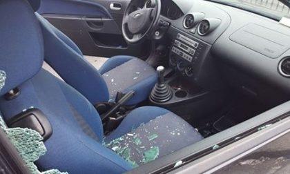"""Strage di finestrini a Legnano, il sindaco: """"Ora la giusta punizione per il colpevole"""""""