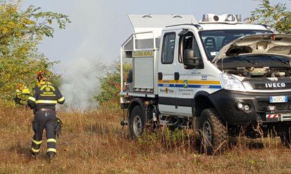 Campo in fiamme tra Cuggiono e Buscate: LE FOTO