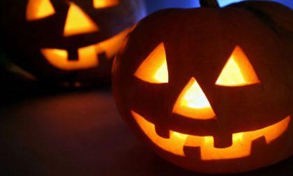 """Halloween """"invade"""" Castano Primo: le iniziative"""