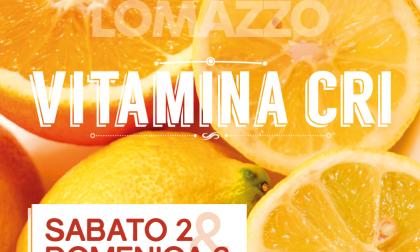 Vitamina Cri tornano le arance in piazza