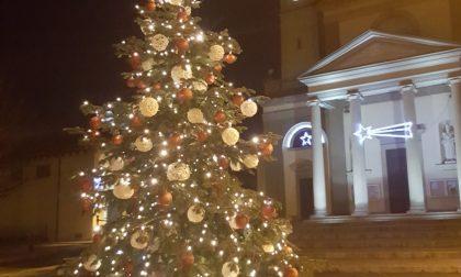 Albero di Natale in piazza a Gerenzano grazie al Mc Donald's