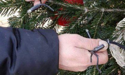 Atto vandalico va in tilt l'albero di Natale di Gerenzano
