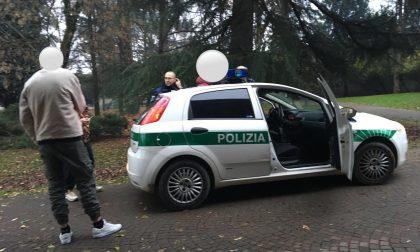 Operazione antidroga, Magenta al setaccio della Polizia locale FOTO