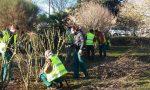 Studenti della scuola agraria di Monza al lavoro in città