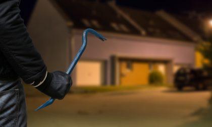 Ladri in azione sotto gli occhi dei vicini