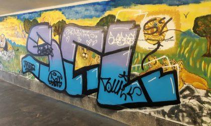 Murales vandalizzati, il Comune sporge denuncia