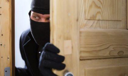 Moglie, marito malato e badante faccia a faccia con il ladro