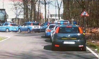 Bosco del Rugareto: Carabinieri di nuovo in azione contro lo spaccio