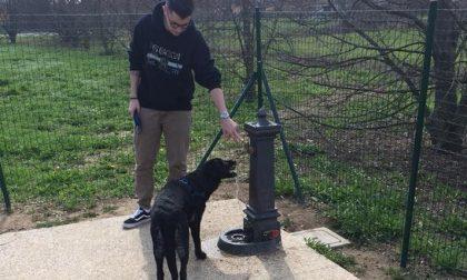 Gudo, area cani: giochi realizzati riciclando 2.500 bottiglie di plastica