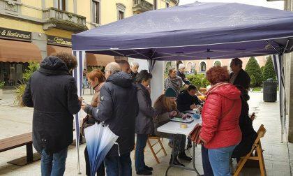 Comitato sì biblioteca anche oggi in piazza a Legnano per raccogliere le firme