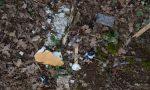 Bosco del Rugareto: si cercano volontari per la pulizia