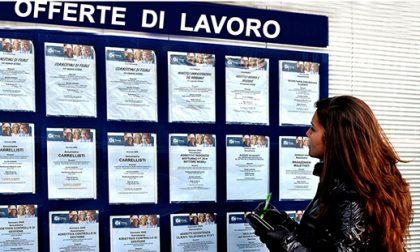 Giovani e lavoro | Ecco le professioni più richieste in Lombardia