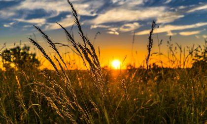 """Aree agricole trasformate in parchi naturali? """"Un rischio per gli agricoltori"""""""