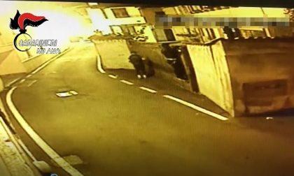 Sgominata banda che rubava auto e nelle case - VIDEO