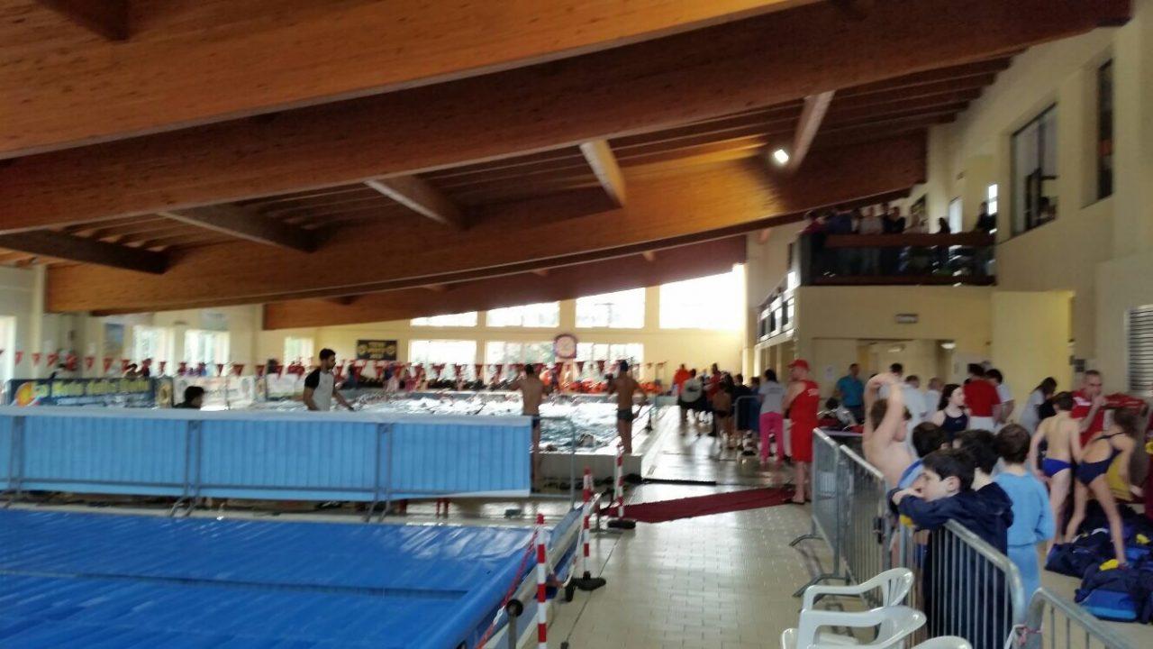 Tecri nuoto un successo la sesta edizione del trofeo - Piscina di cornaredo ...