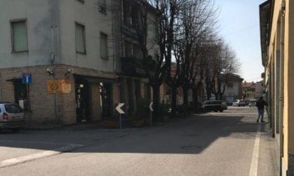 """San Vittore Olona: """"No al taglio degli alberi in via Matteotti"""""""