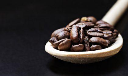 Non solo dessert: come utilizzare il caffè per creare primi e secondi piatti