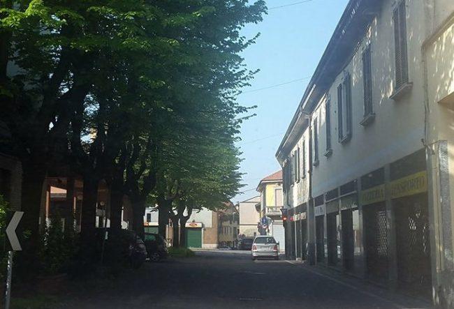 S.Vittore Olona: &#8220&#x3B;No al taglio degli alberi in via Matteotti, sì ad altre soluzioni&#8221&#x3B;