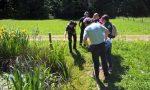 Diventare Guardia Ecologica Volontaria, corso in arrivo
