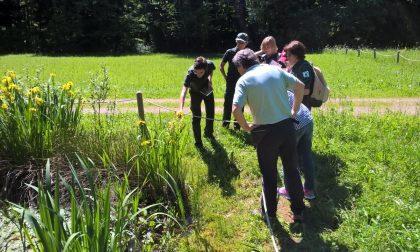 Il Parco Pineta rinnova le cariche e torna al lavoro: porte aperte alle associazioni