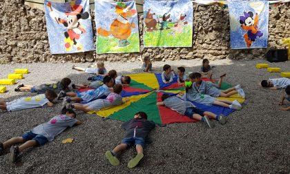 Invasione di topolini all'asilo Busti, è festa per le Volpi VIDEO
