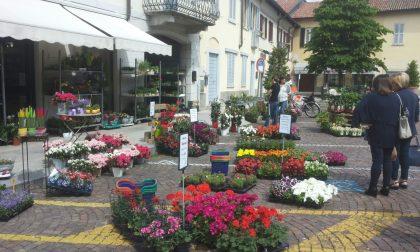 Corbetta: i negozianti rivestono la città di fiori