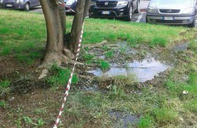 Il tubo perde acqua da quattro mesi... e i rhodensi pagano