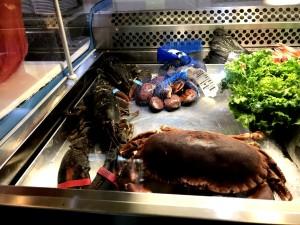 Crudeltà su astici e granchi in un ristorante di Origgio FOTO