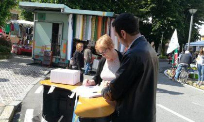 Cerro, elezioni: Settegiorni vi aspetta al mercato per votare
