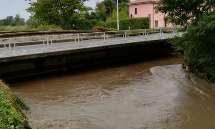 """""""Io non rischio"""": la ProCiv in piazza per prevenire i rischi di un'alluvione"""