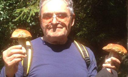 Scomparso mentre cerca funghi: si cerca 78enne rhodense