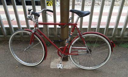 Bici abbandonate a Legnano: aperte le buste con le offerte