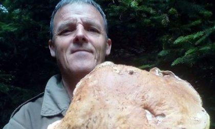 """Oltre il record, in Valtellina trovato un """"porcino alieno"""""""