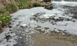 Fiume Olona inquinato, nessuna responsabilità della Tintoria Zerbi