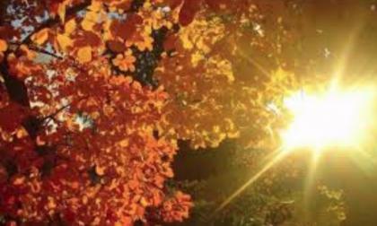 Meteo weekend: ci attendono sole e temperature miti