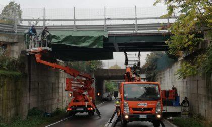 Ponte danneggiato da camion: chiuso tratto Provinciale 229