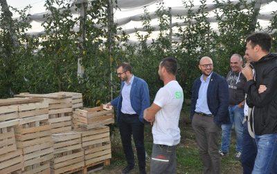 L'Assessore Regionale Rolfi in visita al Frutteto di Ceriano FOTO