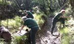 Corso per guardie ecologiche volontarie nell'Abbiatense