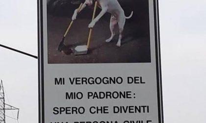 Sui cartelli cani esemplari di padroni incivili